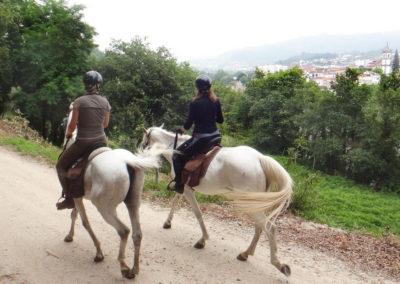 cavalos-3