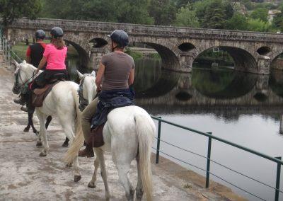 cavalos-7